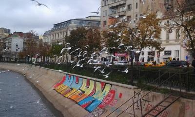 Kingfishers vs Bucharest